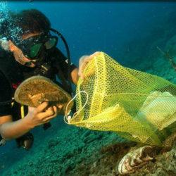 underwater_cleanup